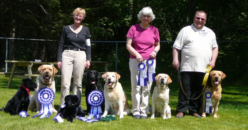 Pinebank bred dogs clean up at the LOC obedience trial 2009